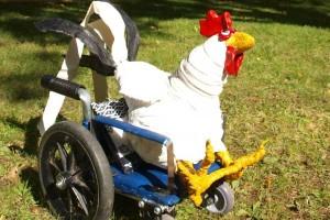 wheel-chicken-edit-2